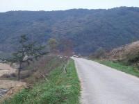 淳昌付近の未成線の築堤